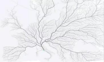 图映射数据的城市量化方法
