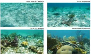 GIS在管理海洋方面的应用
