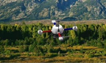 无人机森林监测